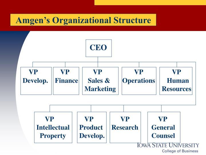 Amgen's Organizational Structure