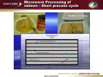 microwave processing of salmon short process cycle