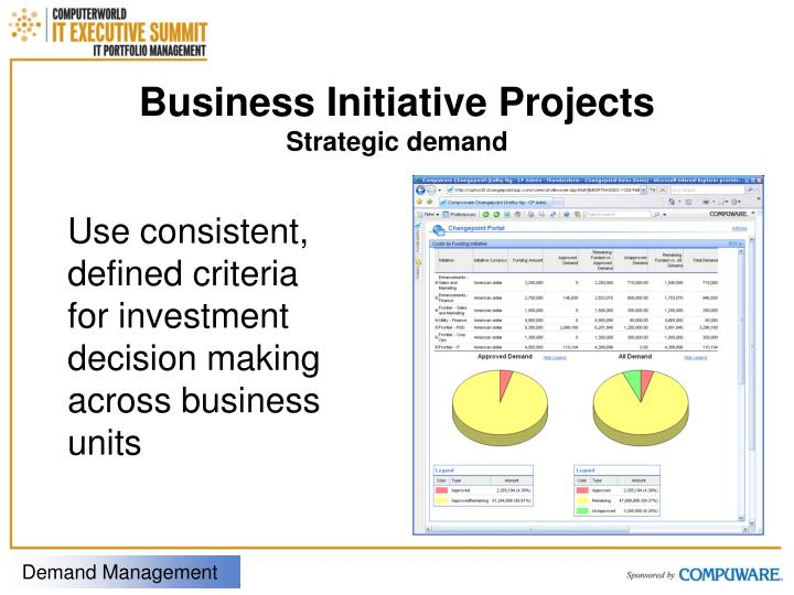 Business Initiative Projects