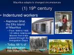 mauritius adapts to changed circumstances 1 19 th century2