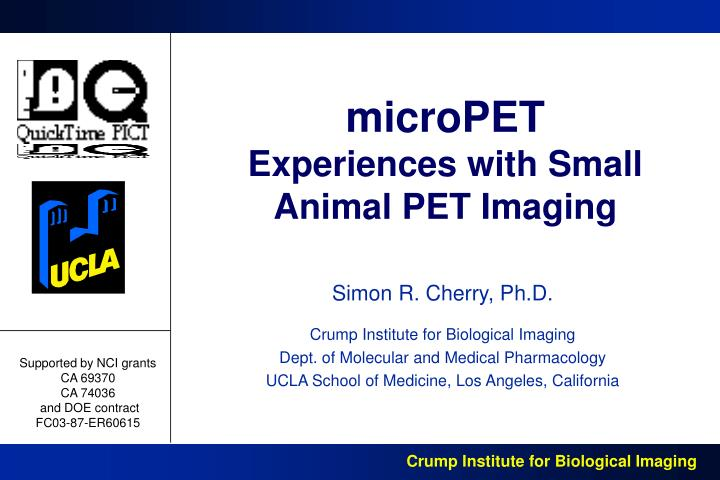 micropet experiences with small animal pet imaging n.