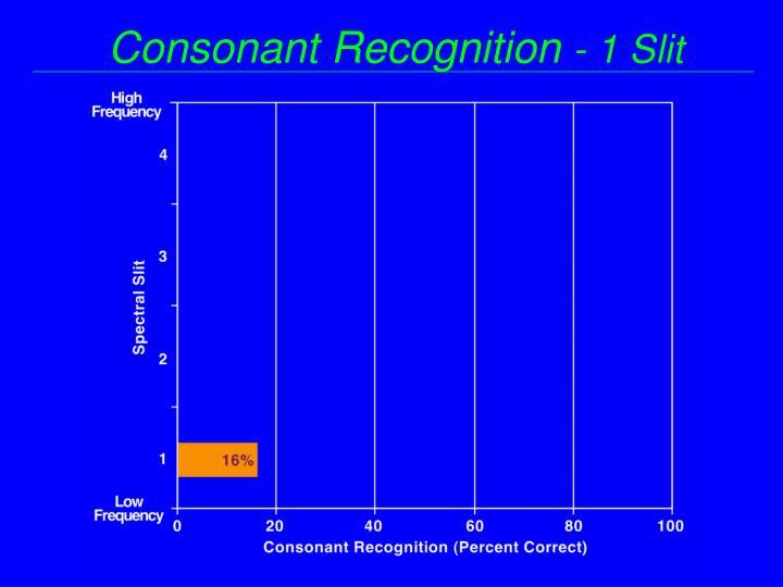 Consonant Recognition