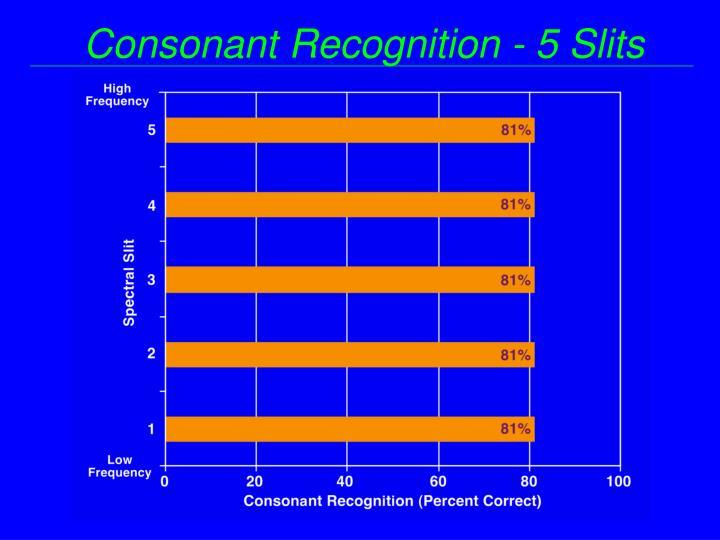 Consonant Recognition - 5 Slits