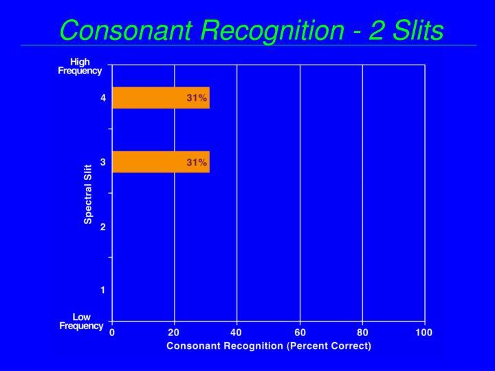 Consonant Recognition - 2 Slits