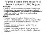 purpose goals of the texas rural border intervention rbi projects