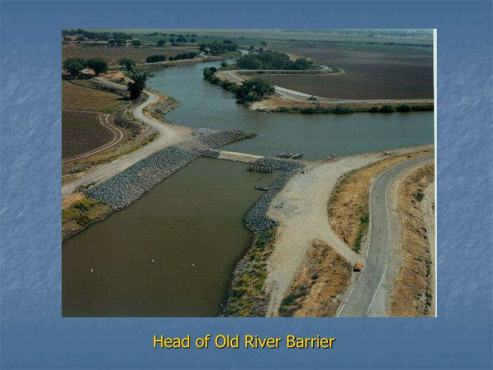 Head of Old River Barrier