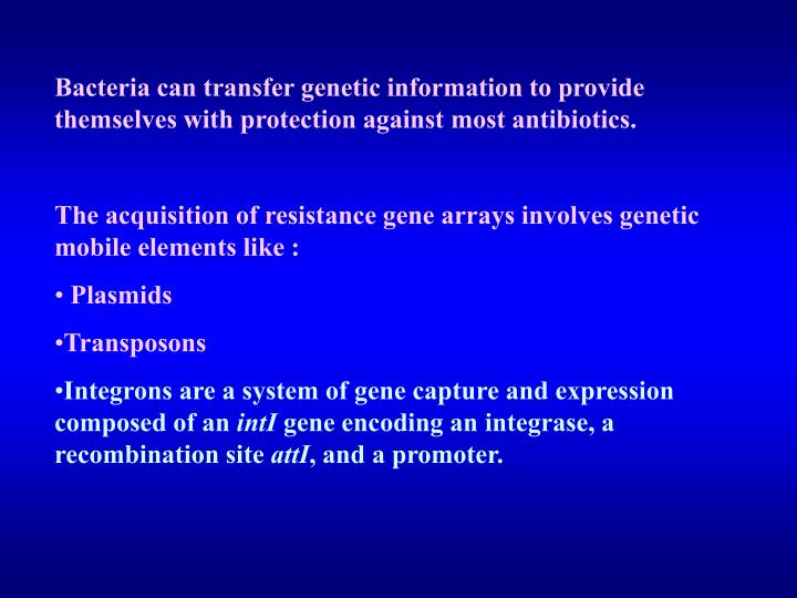 Bacteria can transfer genetic information to provide themselves with protection against most antibiotics.