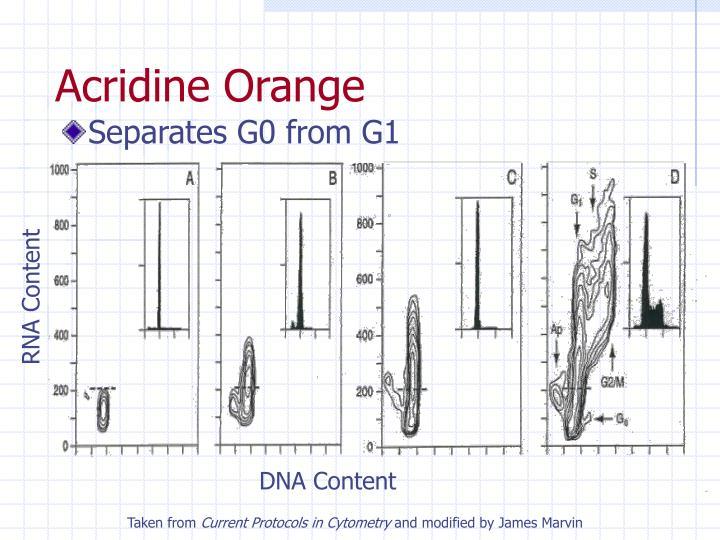 RNA Content