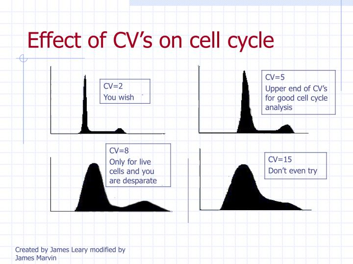 Effect of CV's on cell cycle