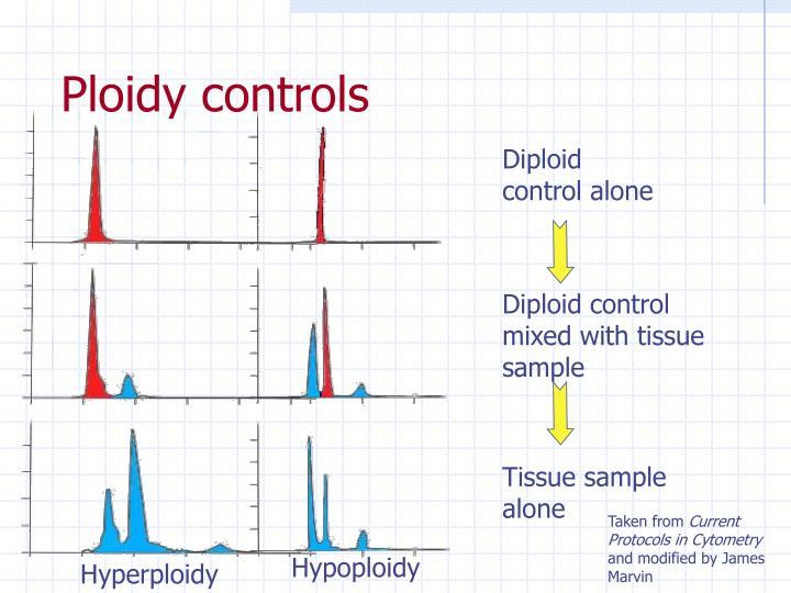 Ploidy controls