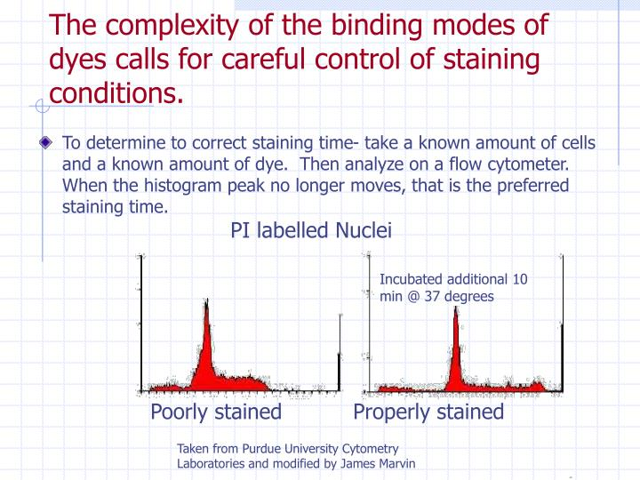 The complexity of the binding modes of dyes calls for careful control of staining conditions.