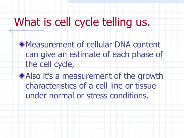 What is cell cycle telling us.