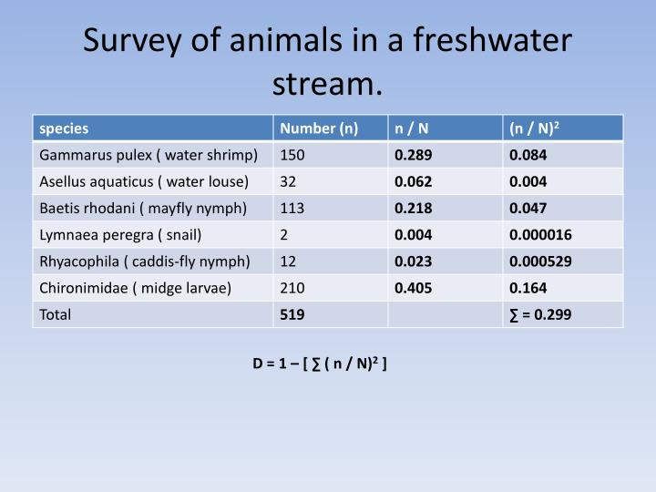 Survey of animals in a freshwater stream.