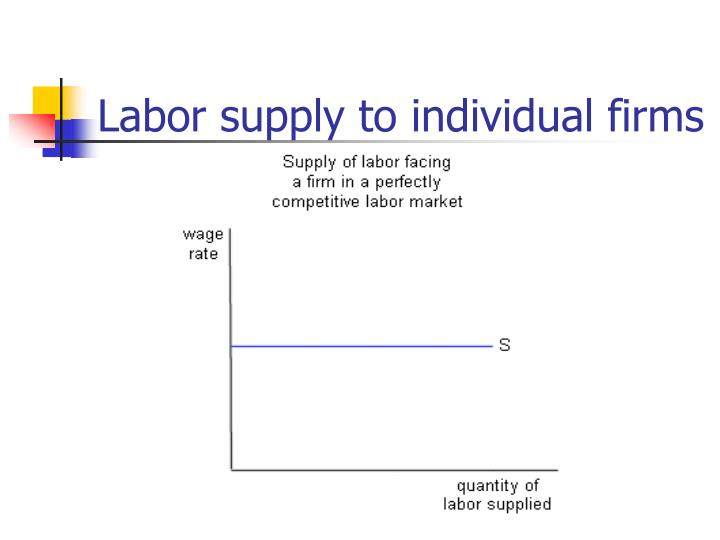 Labor supply to individual firms