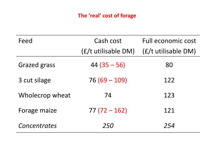 The 'real' cost of forage