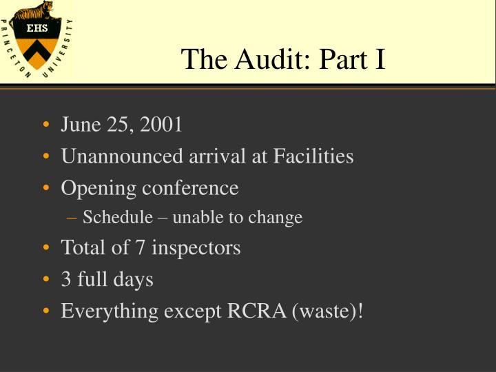 The Audit: Part I
