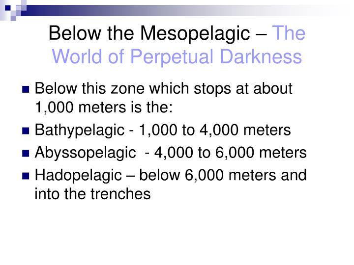 Below the Mesopelagic –