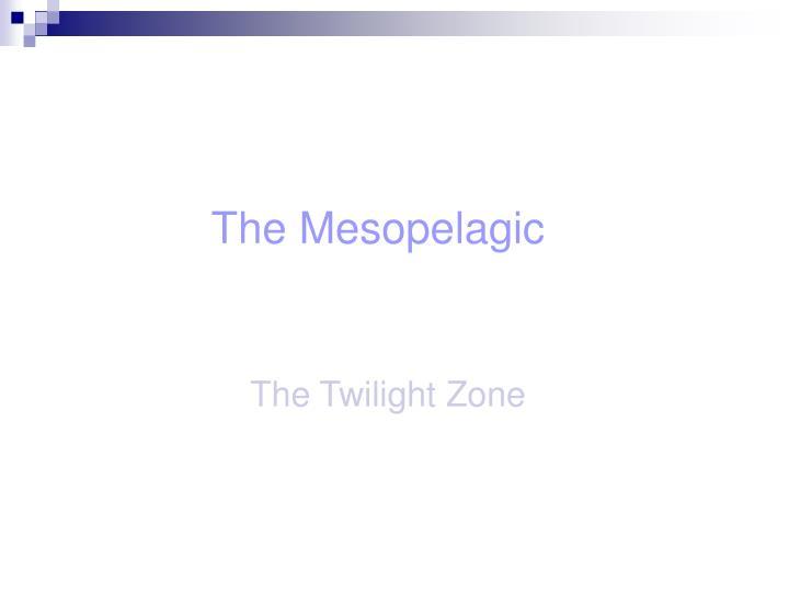 The Mesopelagic