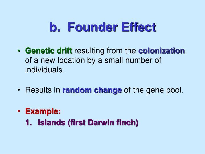 b.  Founder Effect
