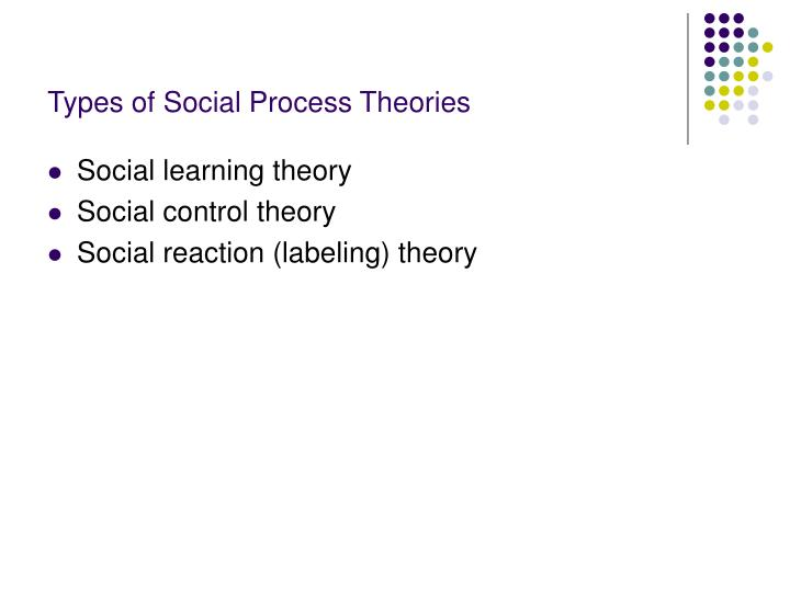 Types of Social Process Theories