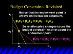 budget constraints revisited3