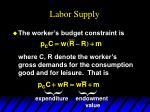 labor supply1