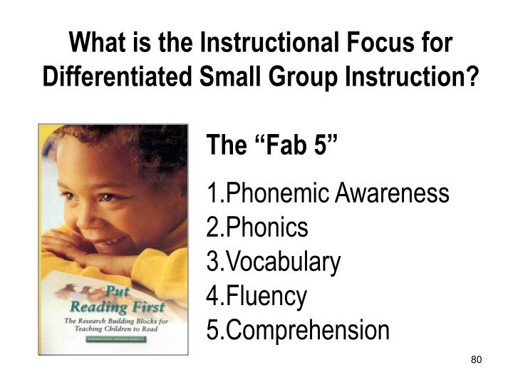 What is the Instructional Focus for Differentiated Small Group Instruction?