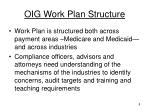 oig work plan structure