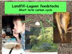 landfill lagoon feedstocks short term carbon cycle