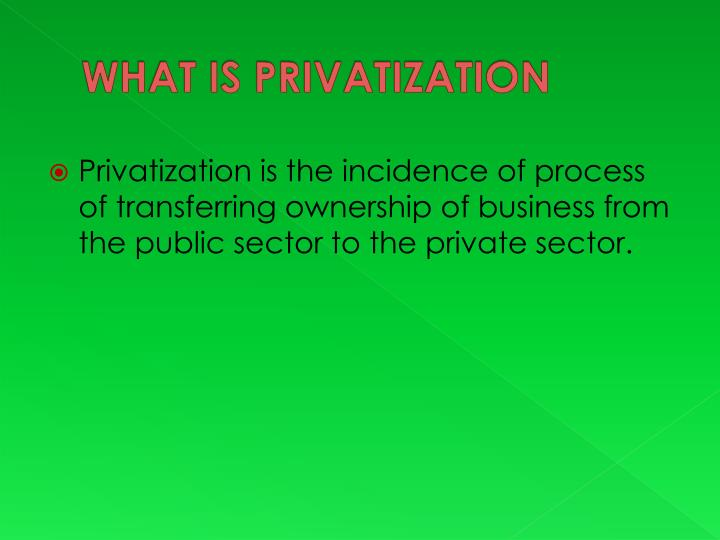 What is privatization