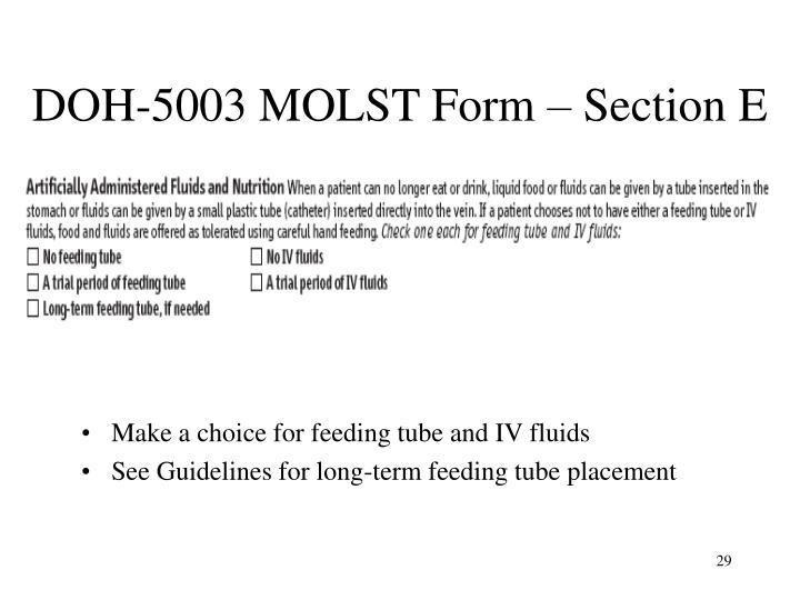 DOH-5003 MOLST Form – Section E