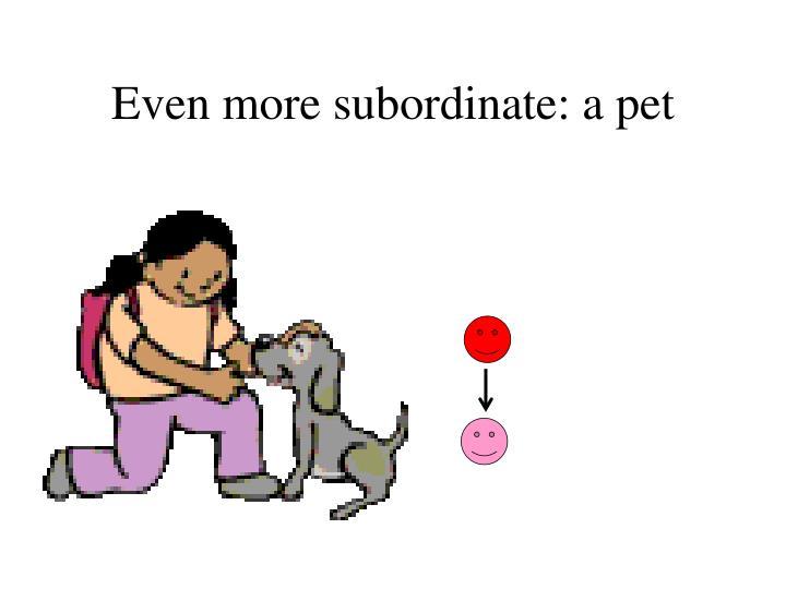 Even more subordinate: a pet