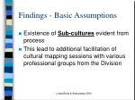 findings basic assumptions