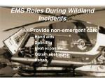 ems roles during wildland incidents