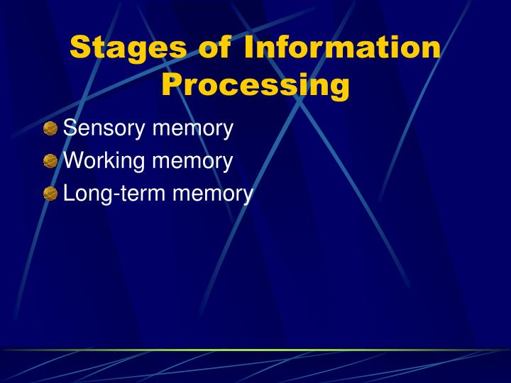 Stages of Information Processing