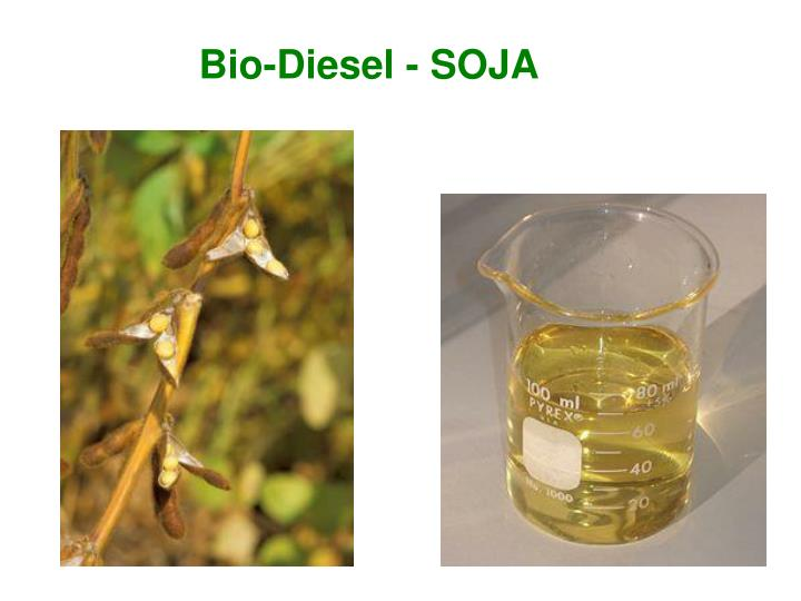 Bio-Diesel - SOJA