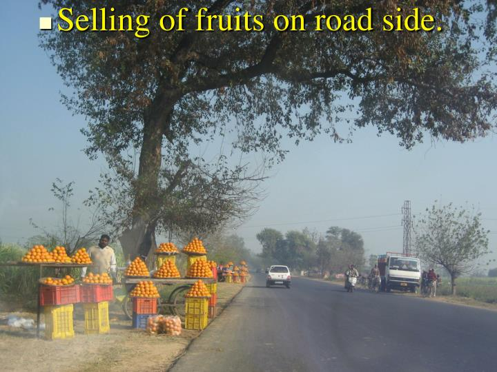 Selling of fruits on road side.