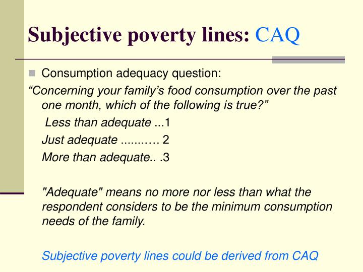 Subjective poverty lines: