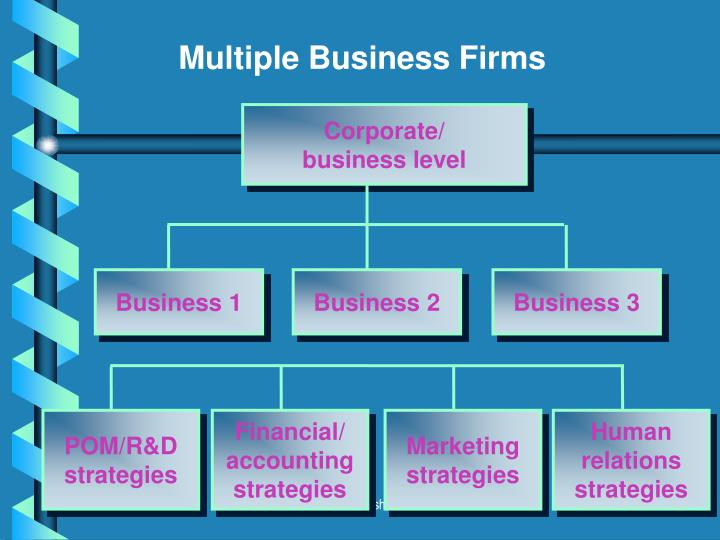 Multiple Business Firms