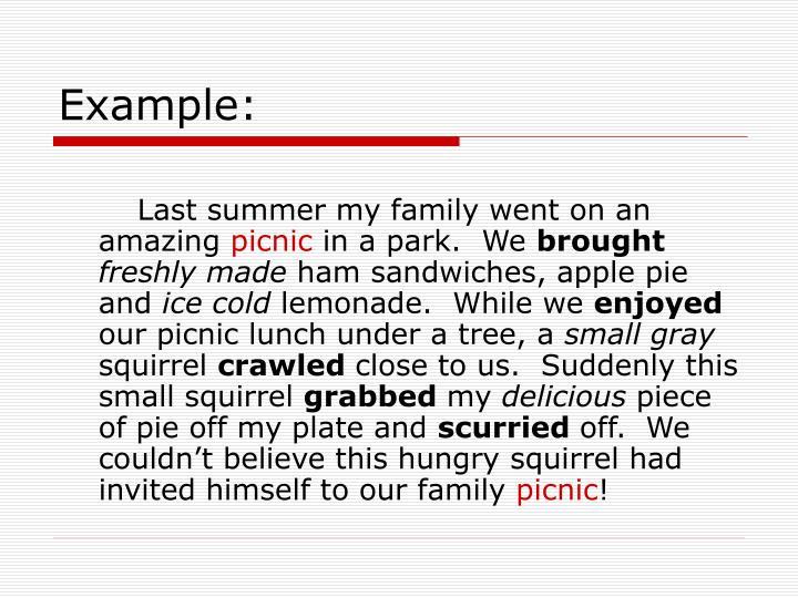 A picnic essay