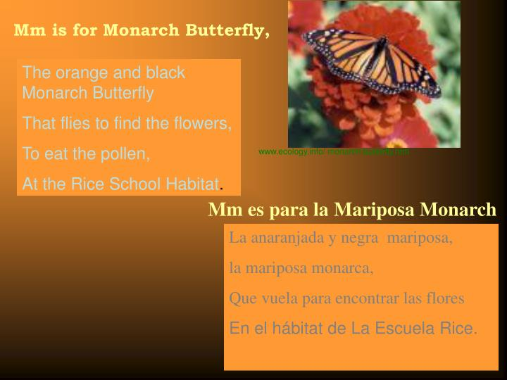 Mm is for Monarch Butterfly,