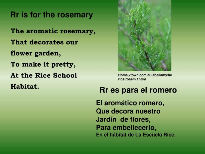 Rr is for the rosemary