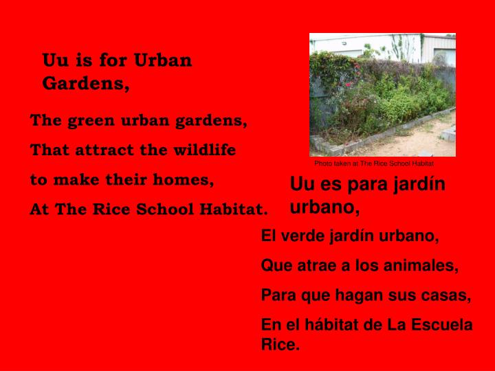 Uu is for Urban Gardens,