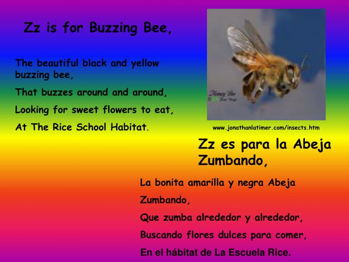 Zz is for Buzzing Bee,