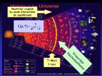 neutrinos coupled by weak interactions in equilibrium