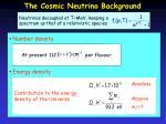 the cosmic neutrino background1