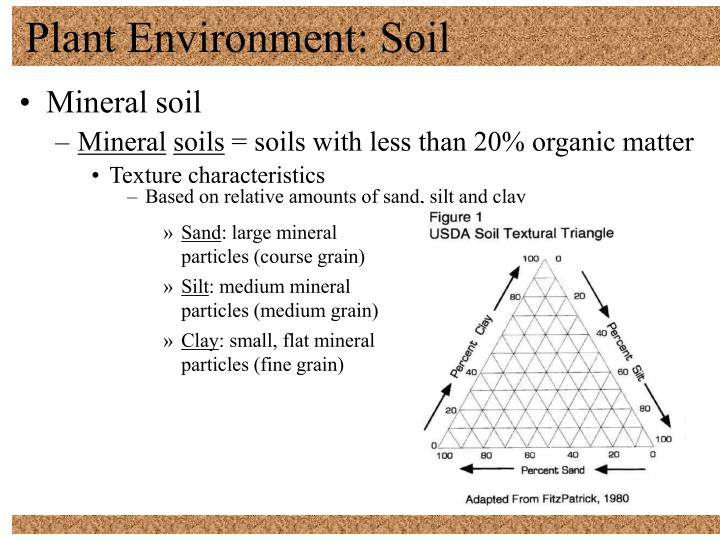 Plant environment soil1