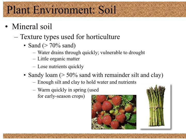 Plant environment soil2
