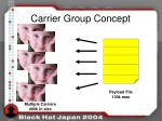carrier group concept