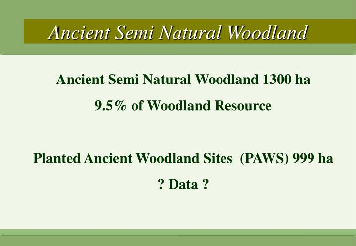 Ancient Semi Natural Woodland